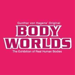 BODY WORLDS London Teaching Resource Profile Image